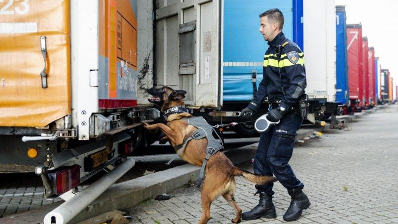 Inklimmers vrachtwagen voorkomen